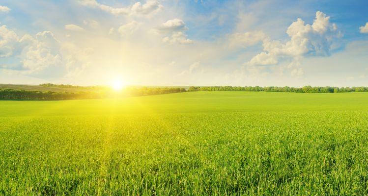 Fotovoltaico e agricoltura: una combinazione possibile